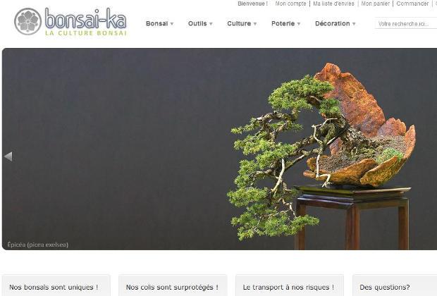 Bonsai Ka bonsai et accessoires