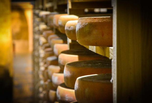 Mieux connaitre le fromage Comté