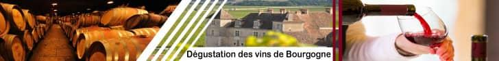 Dégustation des vins de Bourgogne