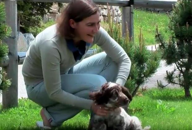 Conseils d'éducation vétérinaire pour votre chien