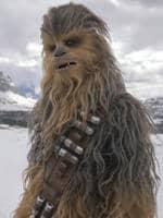 Chewbacca Starwars